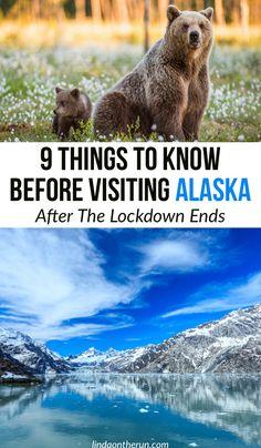 Usa Travel Guide, Travel Usa, Travel Tips, Travel Advice, Travel Ideas, Alaska Cruise, Alaska Travel, Alaska Trip, Cool Places To Visit