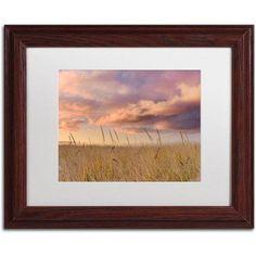Trademark Fine Art Beachgrass Sunrise Canvas Art by Michael Blanchette Photography White Matte, Wood Frame, Assorted