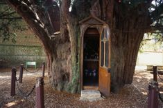 Saint Anne Chapel in the Yew, Normandy