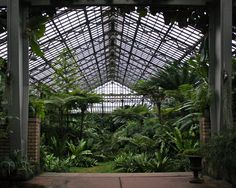 18 Places In Chicago To Go When You Need To Recharge Chicago Travel, Chicago Trip, Visit Chicago, Garfield Park Conservatory, Chicago Attractions, Places In Chicago, Glass Structure, The Second City, Glass House