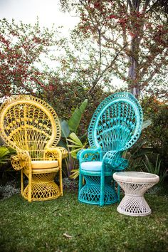 Summer Decor: Painted peacock chairs -- great way to decorate your yard for summer