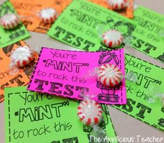 """You're """"Mint"""" to Rock this Test! Get your kiddos pumped and focus for state testing with this cute FREEBIE!  TheAppliciousTeacher.com"""