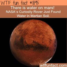 Nasa found water on Mars - WTF fun facts