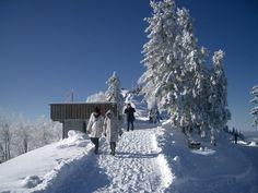 THEMA: Winterwanderweg Pillstein am Zwölferhorn ORT: St. Gilgen  REGION: Salzkammergut BUNDESLAND: Salzburg LAND: Österreich ©Anna Buchegger