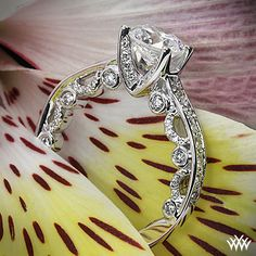 Verragio 4 Prong Channel Bead-Set Diamond Engagement Ring is from the Verragio Paradiso Collection.