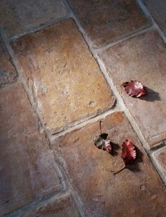"""""""I would love nothing more than to walk across an antique terra cotta tile floor in my barefeet."""""""