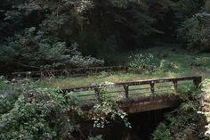 Image de nature, bridge, and flowers Storyboard, Ju Jitsu, Cottage In The Woods, Faeries, Scenery, Grunge, Indie, Garden Bridge, Adventure