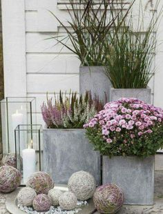 Gardening Autumn - Pixel - With the arrival of rains and falling temperatures autumn is a perfect opportunity to make new plantations Big Planters, Concrete Planters, Front Door Planters, Fall Planters, Modern Planters, Concrete Garden, Outdoor Planters, Plants For Front Door, Outdoor Potted Plants