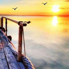 """""""هناك من يرى الحب حياة و هناك من يراه كذبة كلاهما صادق فالأول التقى بروحه و الثاني فقدها."""" #محمود_درويش"""
