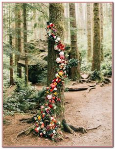 FALL/AUTUMN wedding theme--woodland wedding decorations with cascading flowers, Romantic wedding tree backdrops and arches,best outdoor wedding inspirations Wedding Ceremony Ideas, Woodsy Wedding, Tree Wedding, Outdoor Ceremony, Floral Wedding, Wedding Flowers, Wedding Day, Wedding Shoes, Ceremony Backdrop