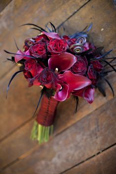 Black bacarra roses, burgundy calla lilies, fiddleheads & feathers) www.Just-Bloomed.com Photography by Erin Johnsonvendors