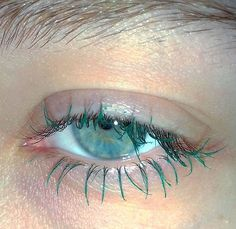 The lashes match the pupils