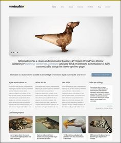 Best Responsive Business WordPress Themes – Want To Stand Out? Wordpress Template, Premium Wordpress Themes, Business