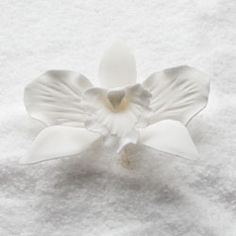 "Wholesale Sugar Flowers - 3"" Cattleya Orchid - Medium - White (16 per box), $15.99 (http://www.wholesalesugarflowers.com/3-cattleya-orchid-medium-white-16-per-box/)"