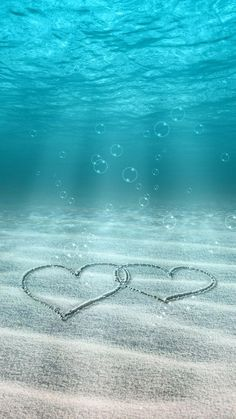 It is love wallpaper you can keep it on your phone wallpaper or somewhere else it is a love wallpaper iphone Underwater Wallpaper, Ocean Wallpaper, Love Wallpaper, Galaxy Wallpaper, Aesthetic Iphone Wallpaper, Nature Wallpaper, Aesthetic Wallpapers, Wallpaper Backgrounds, Underwater Photos