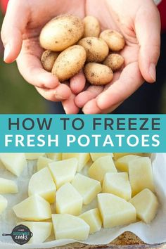 Learn all the tips and tricks forfreezing potatoes to save a ton of time and money. Learning how to freeze potatoes for side dishes, soups, and fast meals is a great way to preserve this staple of so many recipes. Can You Freeze Potatoes, Freezing Potatoes, Canned Potatoes, Freezing Vegetables, How To Store Potatoes, Frozen Potatoes, Healthy Potatoes, Frozen Vegetables, Storing Potatoes