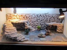 Love the stairs/platform/cave! I need to adapt this for my turtles. Love the stairs/platform/cave! Bearded Dragon Vivarium, Bearded Dragon Enclosure, Bearded Dragon Terrarium, Bearded Dragon Habitat, Bearded Dragon Cage, Turtle Terrarium, Gecko Terrarium, Turtle Habitat, Reptile Habitat