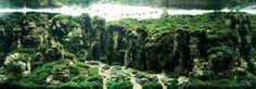 China / Beeld via IAPLC & Aquabase