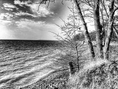 The Dargin Lake shore
