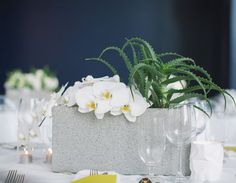 White Orchids and Succulents Cement Block Centerpiece – shared on No Boring Parties