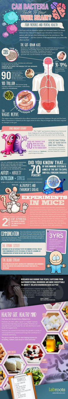 Gut Bacteria and Mental Health - Brain Infographic. Topic: internal organ anatomy, human body, doctor, viral infection, neuroscience.