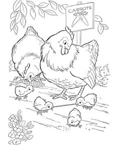 Coloring Pages Chicken from Animal Coloring Pages category. Printable coloring pictures for kids that you could print and color. Have a look at our series and printing the coloring pictures free of charge. Chicken Coloring Pages, Food Coloring Pages, Farm Animal Coloring Pages, Free Coloring Sheets, Coloring Pages For Girls, Mandala Coloring Pages, Coloring Pages To Print, Printable Coloring Pages, Coloring Books