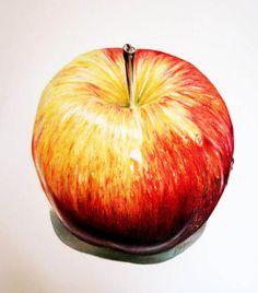 Apple Coloured Pencil.jpg