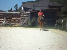 Horsemanship - Pattern ohne Sattel und Zaumzeug