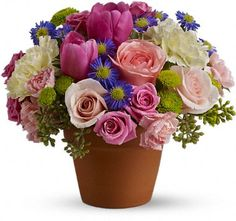 Spring Sonata - A warm terra-cotta pot and lots of fun colors give this bouquet an endearing country style. Bright, energetic blooms mix with light pastels in this shabby chic bouquet.