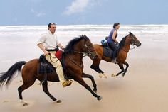21 ideas for the December long weekend. Here's a bit of horse riding on the Wild Coast