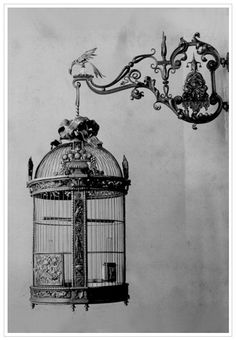 old photo of ornate bird cage with hanging bracket