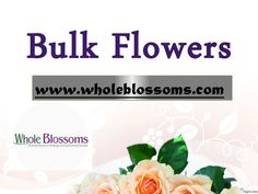 Need #gerberas for #wedding? Planning to decorate your event with gerberas? Or looking for some other #flower; http://www.wholeblossoms.com/ is the one place where you can get #bulk flowers with ease.