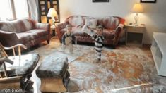 family living room messy – Homes Tips Just Kids, Bad Kids, Naughty Kids, Raising Kids, Your Pet, Couch, Living Room, Mom, Furniture