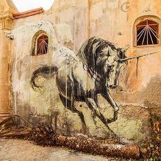 """Artist : Faith47 """" Djerba Tunisie"""" 07/ 2014"""