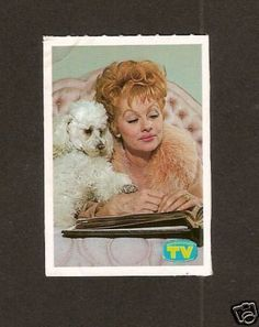 Lucille Ball and her doggy #dogs #pets #Poodles #tvguide #celeberty