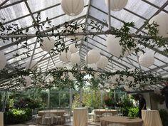 Wedding Farmington Gardens Farmington Gardens, Garden Wedding, Wedding Flowers, Bridal Flowers