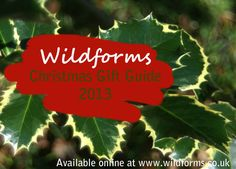 Please like and share, to get a 10% discount on our site. You also have the chance to win one of our Wildforms Goody Bags, just answer 3 simple questions Get 3 questions right & your name will go into a draw to win one of ten goody bags.  1 How many Pooters are lined up on the gate? 2 What charity do our Christmas Card Packs support? 3 How many Nick Baker Kits do we sell? Use our contact form http://www.wildforms.co.uk/contact/ to give your answers and your name and address (UK only)