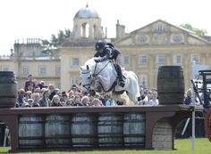 Vittoria in the web site Horse&Hound Borough Pennyz withdrawn from WEG August 29th 2014