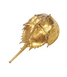 Gold Dipped Horseshoe Crab Brooch from Candy Shop Vintage