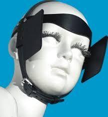 Image result for side blinders