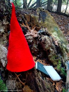 Gnome hats and miniature books abandoned on a forest trail for strangers to discover - Nichola Battilana