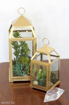 Outstanding 35 Amazing Ways to Planting Terrarium https://godiygo.com/2017/12/06/35-amazing-ways-planting-terrarium/