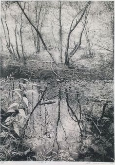 TAKASE Motohiko Water 2011 etching on gampi. This is somewhat a different idea - the reflections in the water being the effect that your choices make? The path being a tangible thing, the tree and the consequences being nothing you can get rid of; the reflection.