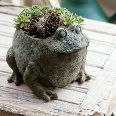 eclectic outdoor planters by Olive & Cocoa