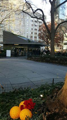 Madison Square Park. NYC. Desember 2016.