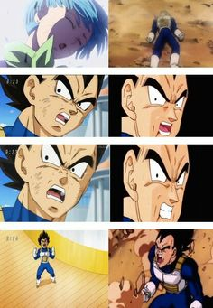 Vegeta's Loved Ones