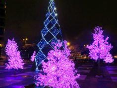 15. Árbol de Navidad en el parque de la Fiscalía