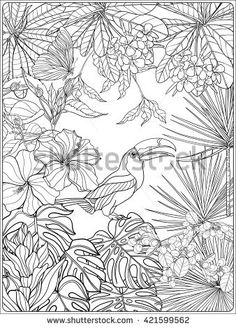 Tropical wild birds and plants. Tropical garden collection. Coloring page. Coloring book for adult and older children.  Outline vector
