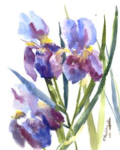 Blue Irises, Original watercolor painting, 14 X 11 in, watercolor art, floral…