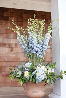 here is a thought using glads in the tall urns Laura has and surrounding the base with colorful plants